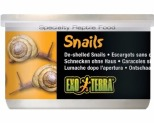 EXO TERRA SNAILS DESHELLED 48GM