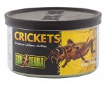 EXO TERRA CRICKETS 34GM - SMALL