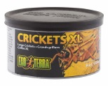 EXO TERRA CRICKETS 34GM - XLARGE