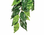 EXO TERRA FOREST PLANT FICUS - LARGE