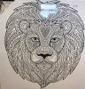 Canvas Lion 500 x 500