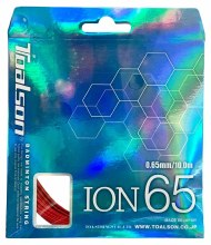 Ion 65
