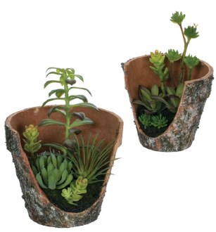 Broken Pot Succulent Garden (Large)
