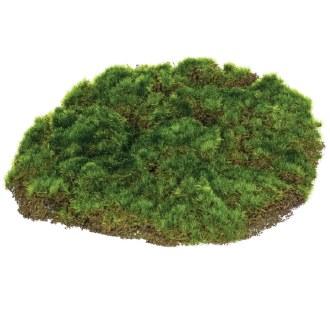 Round Moss Pad