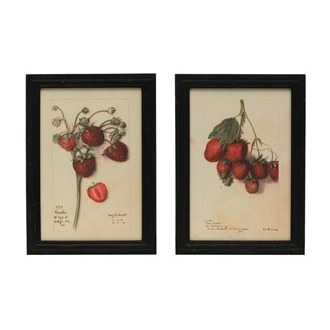 Framed Strawberry Print