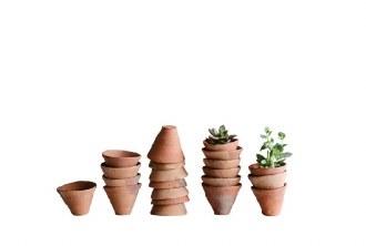 """2.5"""" Terra Cotta Pot"""