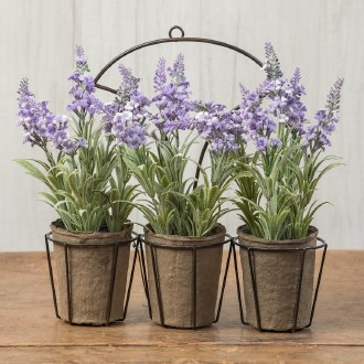 Lavender Wall Mount