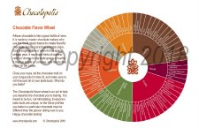 Chocolopolis Flavor Wheel Postcard