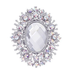 Clear & Silver Pin