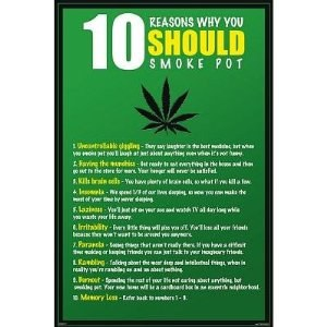 10 Reasons Why You Should Smoke Pot Poster