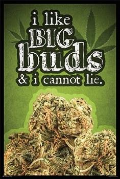 Big Buds Poster
