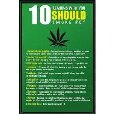 10 Reasons Why You Should Smoke Pot Poster