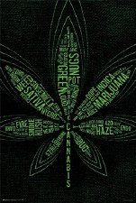 99 Cannabis Terms Poster