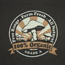 Organic Mushroom T-Shirt Small