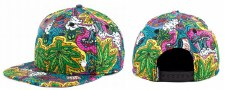 Wonderland Snapback Hat
