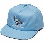 Anti Hero Mens Lil Pigeon Hat-Lt Blue-OS