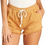 Billabong Coast Line Walkshort-Golden Hour-M