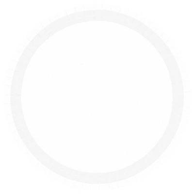 """10.5"""" Banq Plates 24 CT White"""