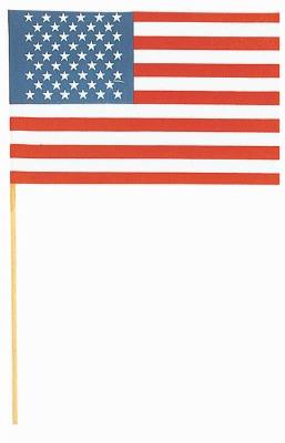 "American Flag 6"" X 9"""