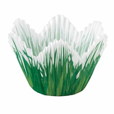 Cup Shpd Grass 24 CT