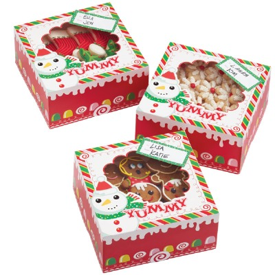 Frosted Fun Med Cookie Box 3