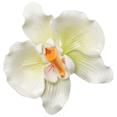 Gum Paste Orchid