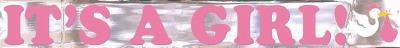 It's A Girl Mtllc Banner 15