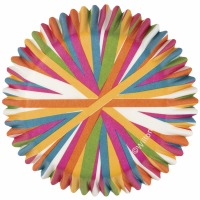 Baking Cups Color Wheel 75 CT