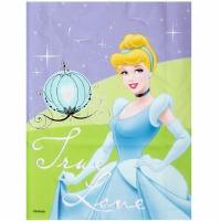 Cinderella Treat Bags 16 CT