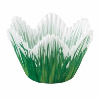 Cup Shpd Grass 24 CT