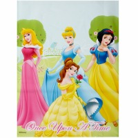 Disney Princess Treat Bag 8 ct