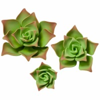Gumpaste Succulents Green