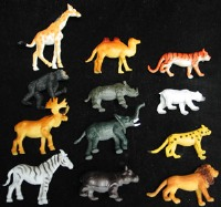 Jungle Animals 6 CT