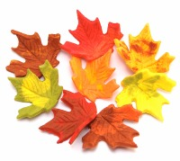Large Autumn Leaves 8 CT