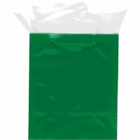 Large Gift Bag Green