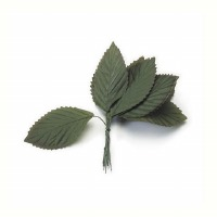 Large Rose Leaf - Green 12 Pkg