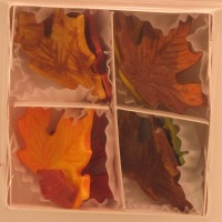 M-Large Autumn Leaves 8 CT