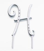 Monogram Silver Large  H