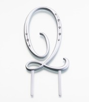 Monogram Silver Large  Q
