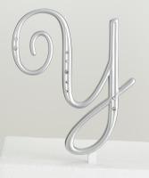 Monogram Silver Rhinestone Y