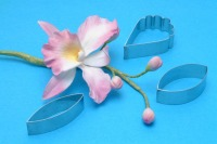 PME Cattleya Orchid Cut/Set 3