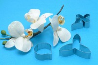 PME Moth Orchid Cutters Set 3