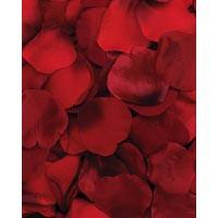 Rose Petals Burgundy 100 CT