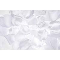 Rose Petals White 300 CT