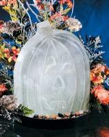 Sculptures In Ice - Jack-0-Lan