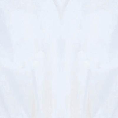 "Tissue 20"" X 24"" White 8 CT"