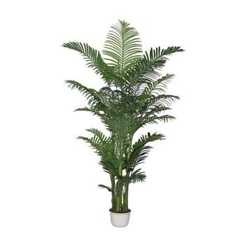 "Areca Palm - 90"""