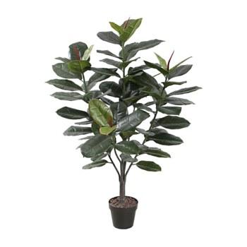 "Ficus Tree -47"""