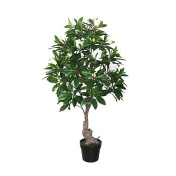 """Magnolia Tree - 66"""""""