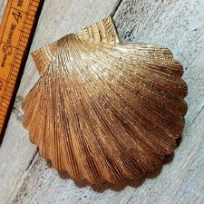 Scallop Shell Door Knocker - Natural Brass